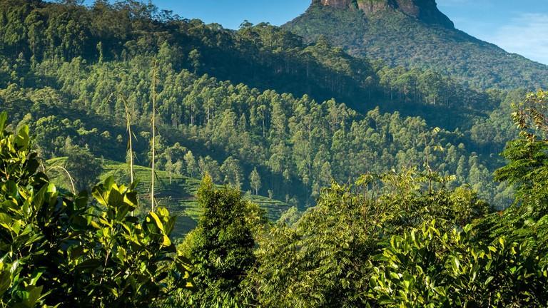 Great Adam's Peak in Sri Lanka early in the morning