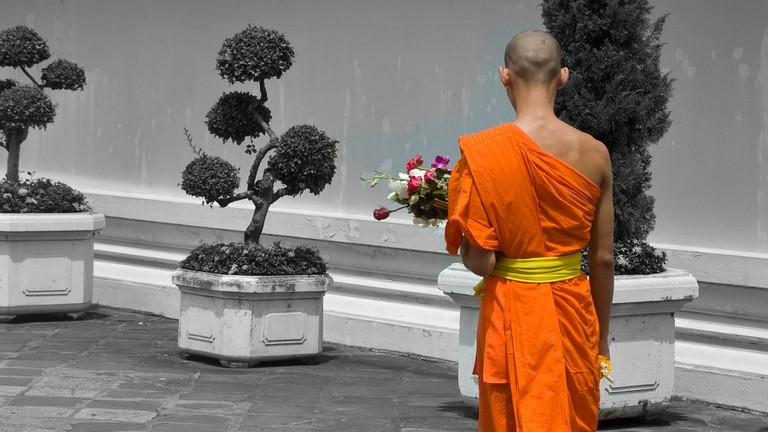 Buddhist monk from behind