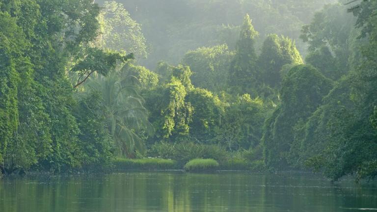 Rio Sirena River in Corcovado National Park, Costa Rica