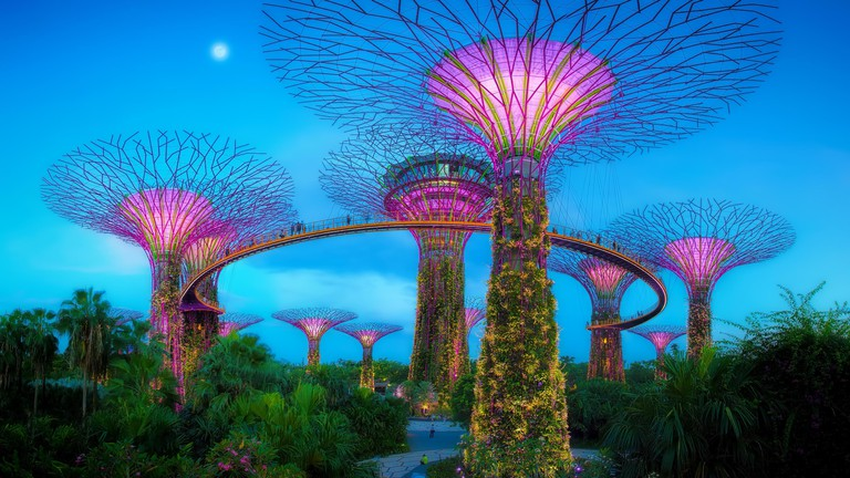The Supertree Grove at Gardens by the Bay, Singapore.