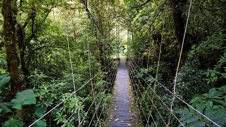 Bridge through Juan Castro Blanco National Park.