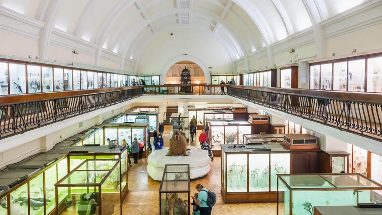 Horniman Museum, London.
