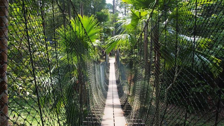 Canopy walk at Shah Alam Botanical Park, Malaysia