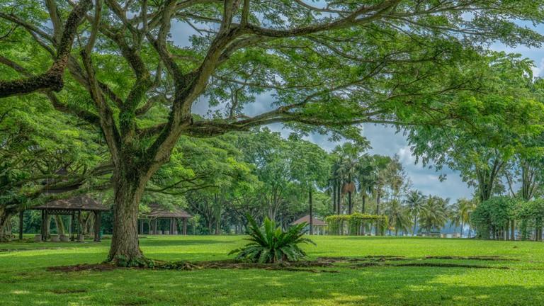 Pasir Ris Park, Singapore.