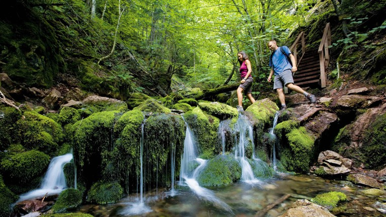 fundy-national-park-new-brunswick-department-of-tourism-and-parks