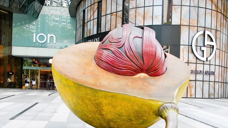 Singapore Nutmeg and Mace Ion Orchard