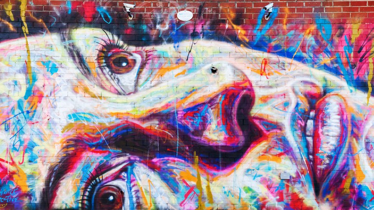 There are around 50 murals at The Bushwick Collective