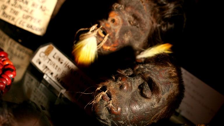 Shrunken heads at Ye Olde Curiosity Shop