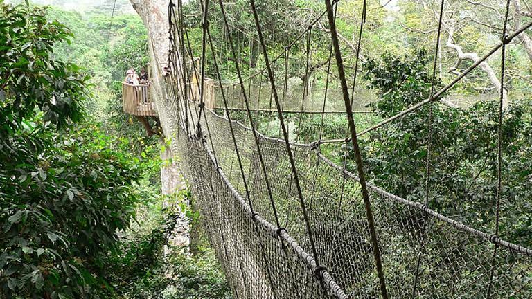 Canopy Walkway Kakum National Park | © Stig Nygaard/WikiCommons