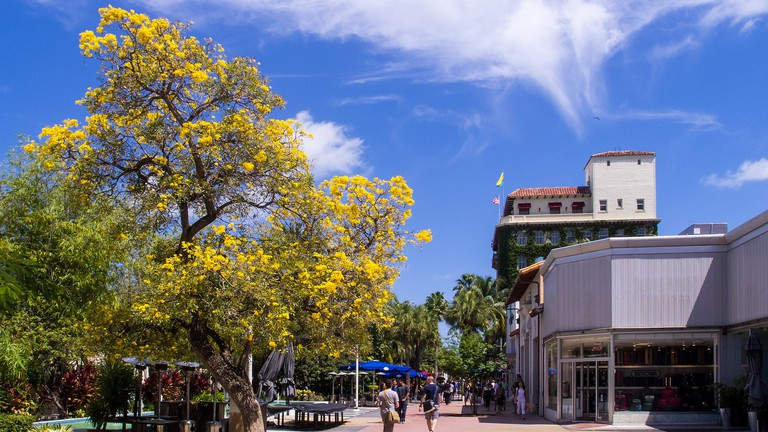 Lincoln Road Mall features outlets for you to do all the luxury shopping you can handle