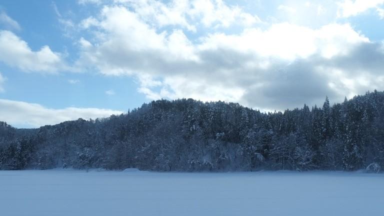 Tawako in winter