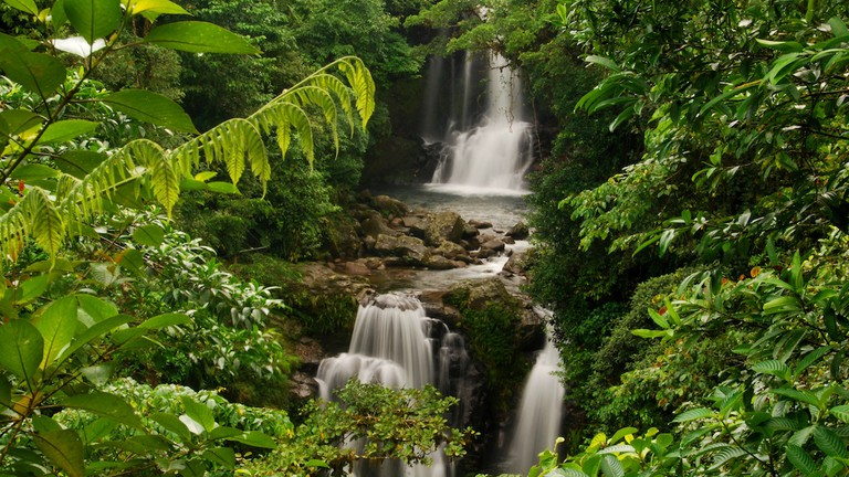 Natural beauty surrounds the Rara Avis Rainforest Lodge