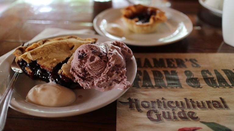 Treat yourself to a piece of Saskatoon berry pie