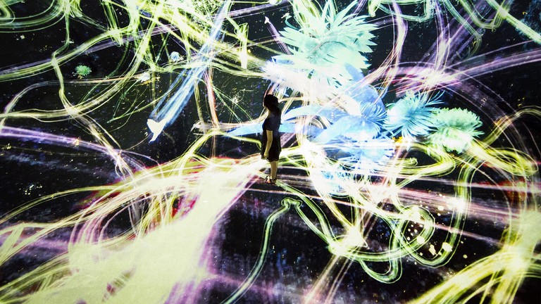 Crows are Chased and the Chasing Crows are Destined to be Chased as well, Transcending Space (Credit to teamLab)