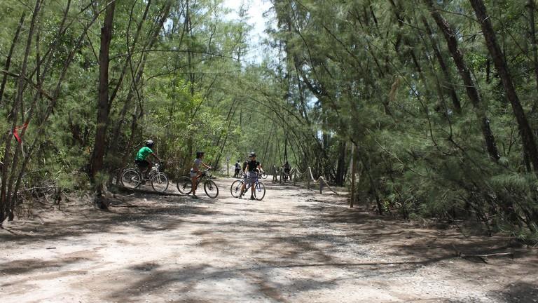 Oleta River State Park, North Miami Beach