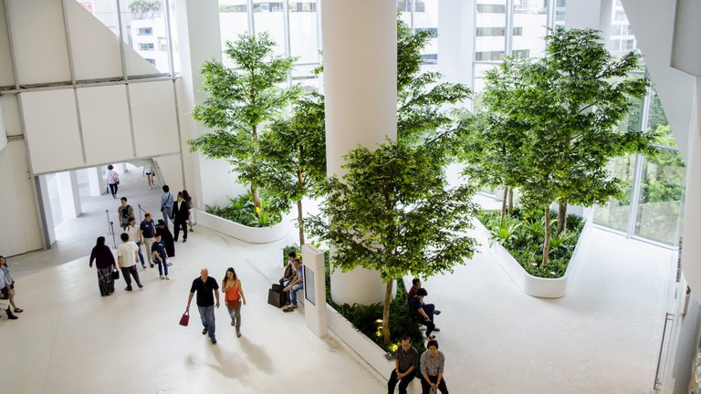 Top view plant-in-building at Central Embassy Bangkok, Thailand