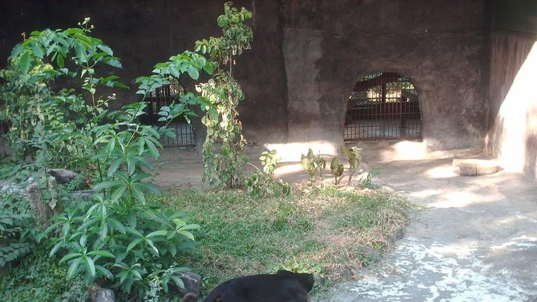 Lao Zoo