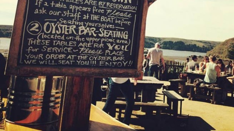 Shuck your own oysters at Hog Island Oyster Company