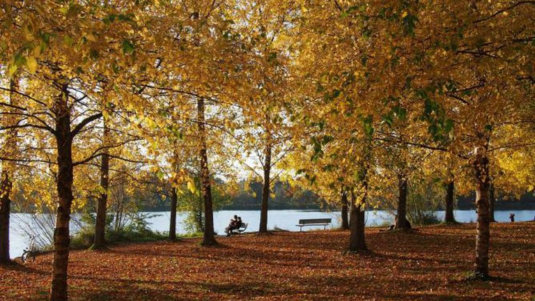 Autumn at Green Lake Park