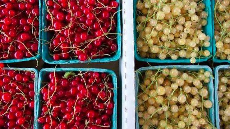 Sorauren Farmers' Market