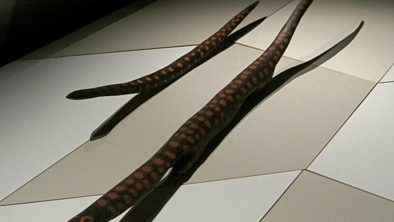 Aboriginal Art at the Australian Museum
