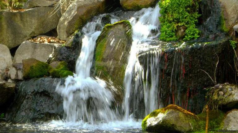 Waterfalls at the MK Nature Center