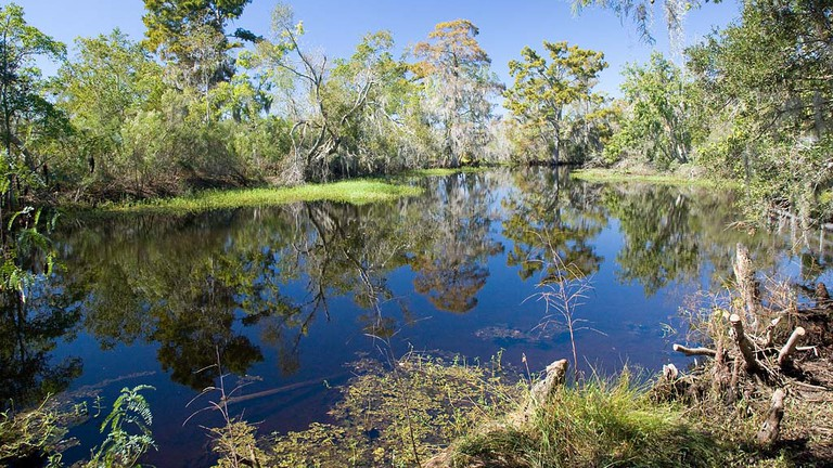 Lower Kenta Canal, Jean Lafitte National Historic Park and Preserve, Marrero |