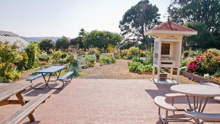 Community Garden, Entrance