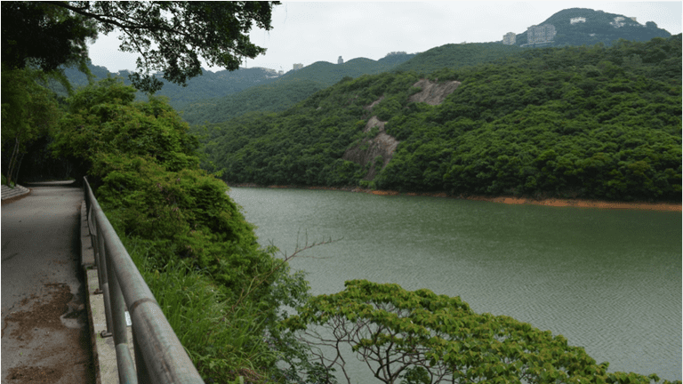 This is a well-shaded track that gives you a glimpse of Hong Kong skyline from time to time