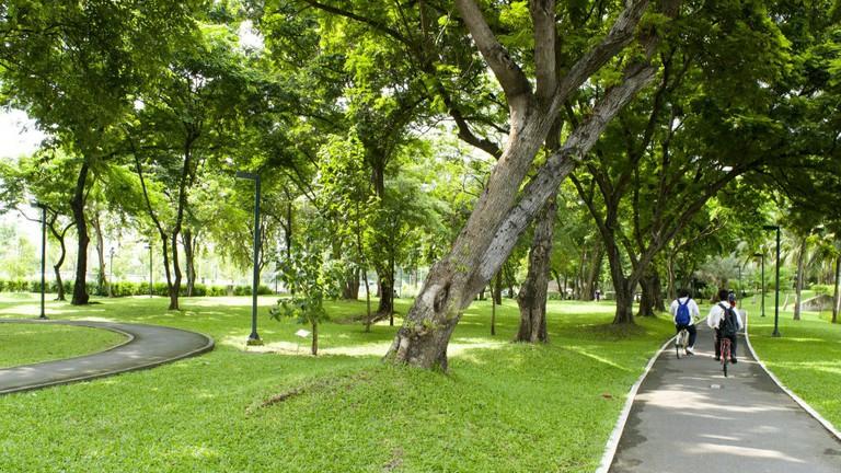 Bike trail at Benjakiti Park