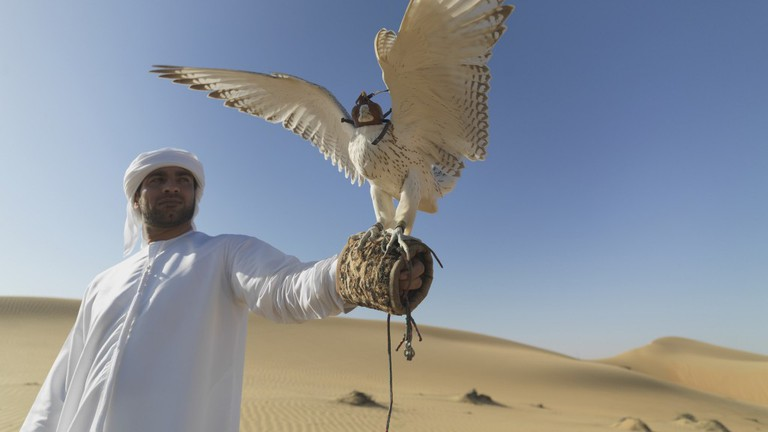 UAE Wildlife