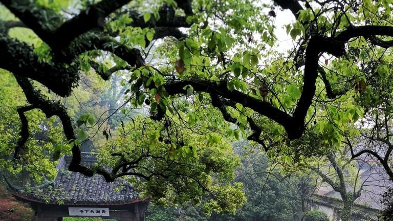 hangzhou-1534146_1280-1024x819