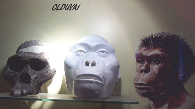 Hominid recreations at the Oldupai Gorge Museum