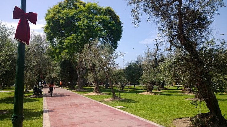 Bosque del Olivar, Lima