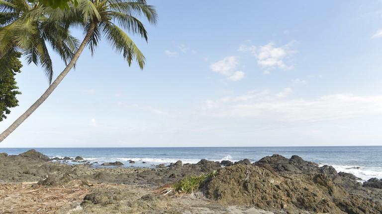 Tropical views and brews