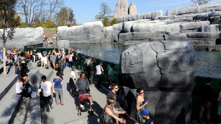 Patagonia,Zoo de Vincennes,zoological park of Paris,France