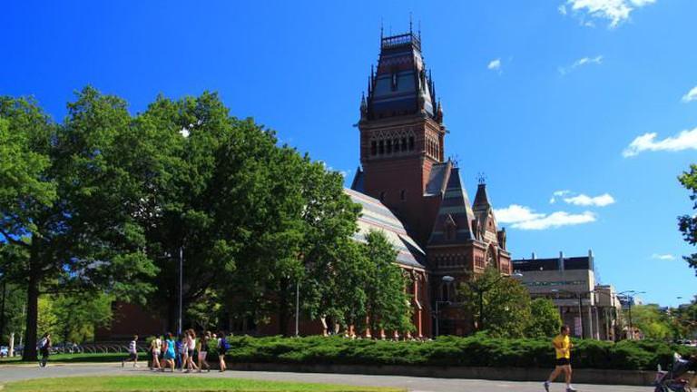 The Top Restaurants In Cambridge, Massachusetts