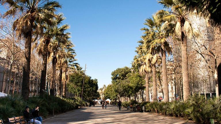 Rambla de El Raval © OK Apartment/Flickr