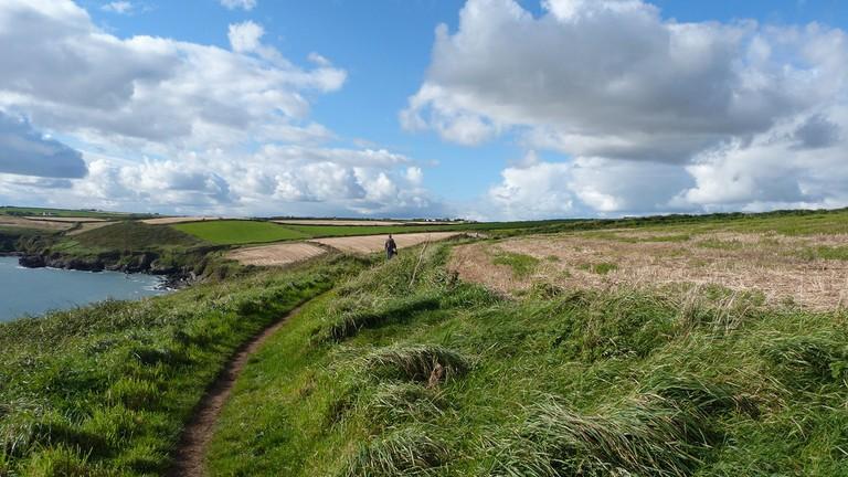 Ballycotton Cliff Walk | ©Elaine/Flickr
