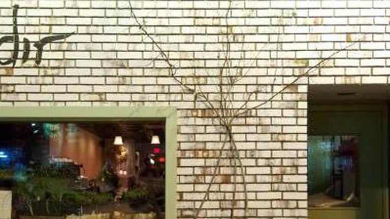 The 10 Best Restaurants In Cambridge Massachusetts