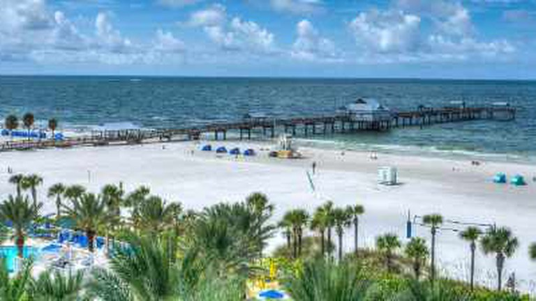 Best Restaurants In Clearwater Florida