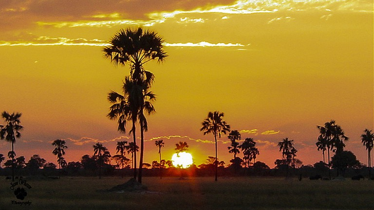 Zimbabwe sunset I © Jason Wharam/Flickr