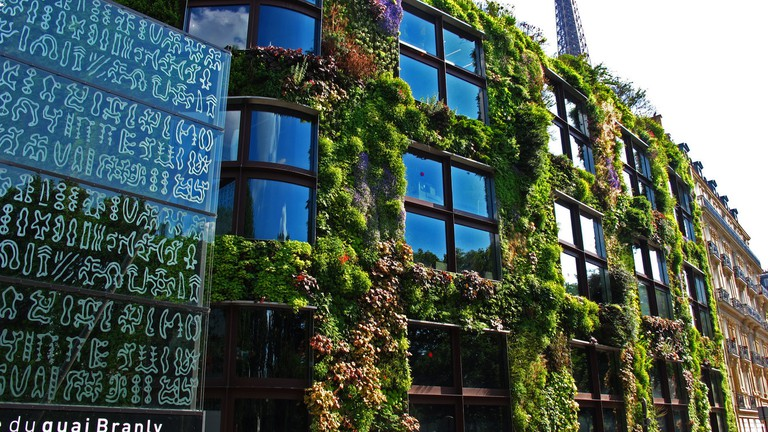 Patrick Blanc and The Hanging Gardens Of Paris
