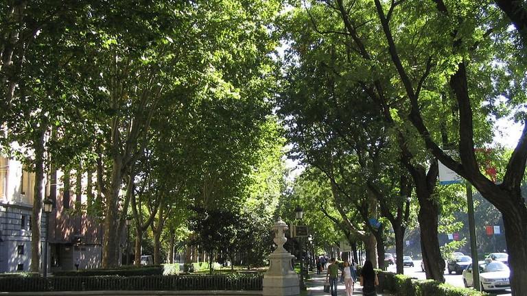 The Paseo del Prado | © tnarik / WikiCommons