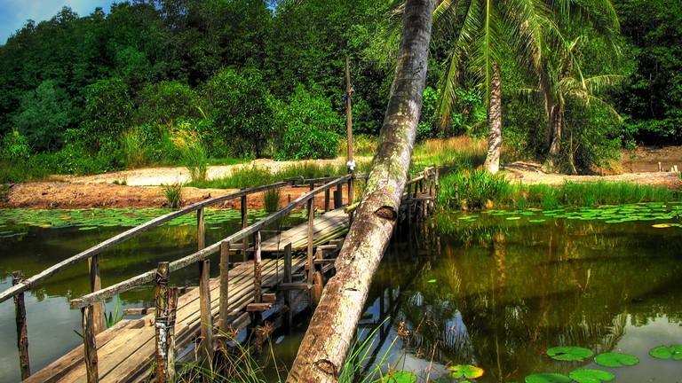 Image result for Pulau Ubin