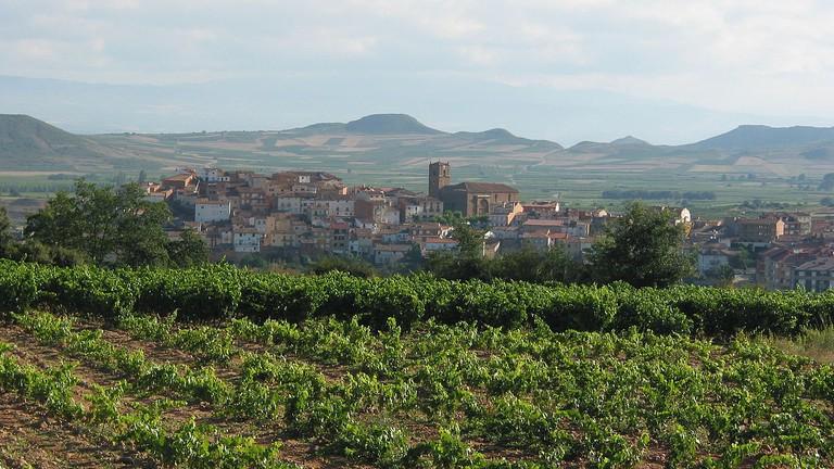 La Rioja wine region, Spain   © Gurrea / Wikimedia Commons