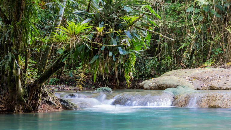 Y.S. Falls, Jamaica |© Sherry Talbot / Shutterstock