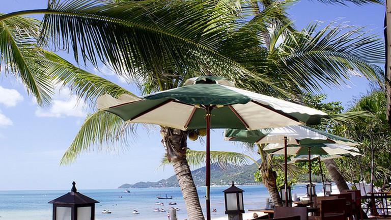 The 10 Best Restaurants In Koh Samui