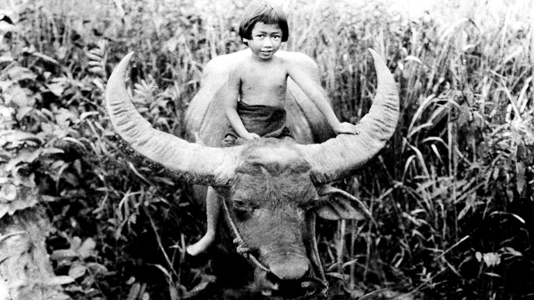 Learn About the Amazing Movie From Laos That Spawned