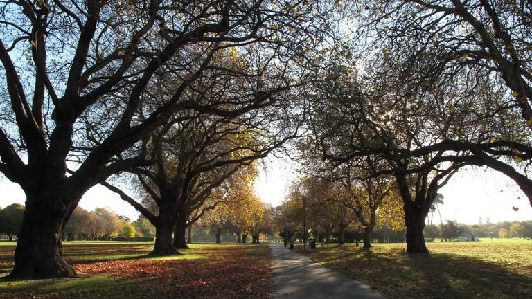 dating sites Christchurch Uusi-Seelanti